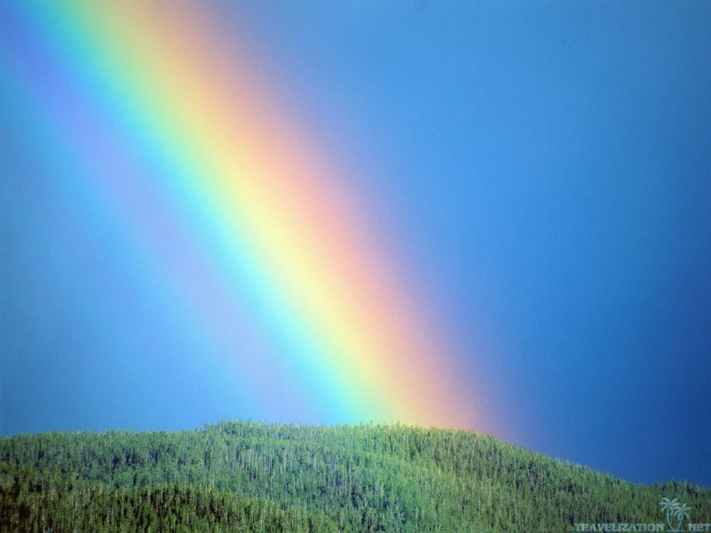 Bows in the Heavens: A reflection on Genesis 9:8-17